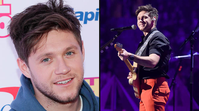 Niall Horan divides fans after clapping back at a comment about his bum
