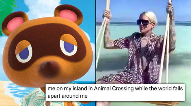 The best Animal Crossing: New Horizon memes - PopBuzz