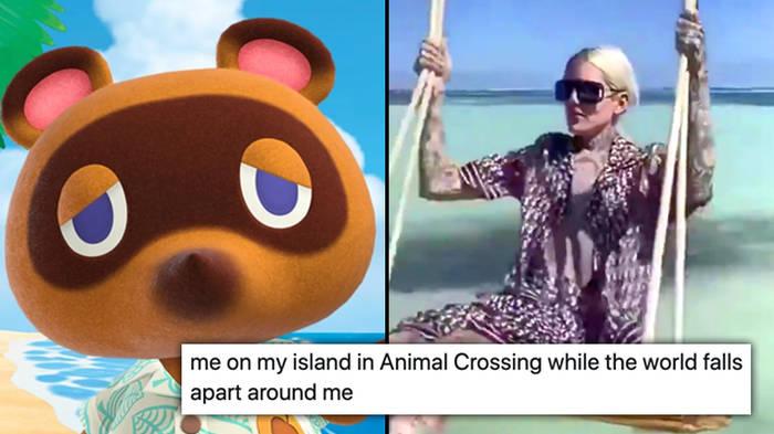 The Best Animal Crossing New Horizon Memes Popbuzz