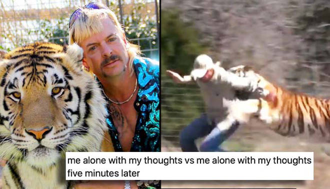 Joe Exotic hand-reared over 1,200 tigers and big cats at his roadside zoo.