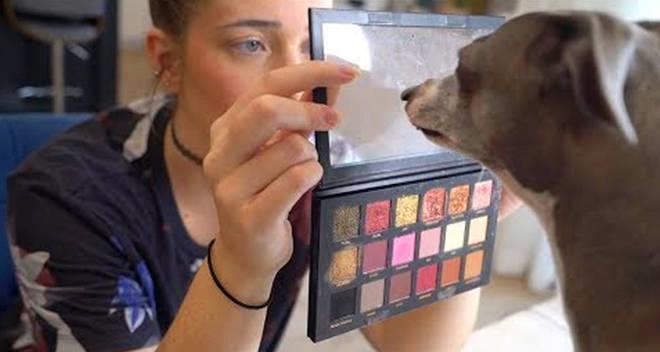 makeup youtubers pets