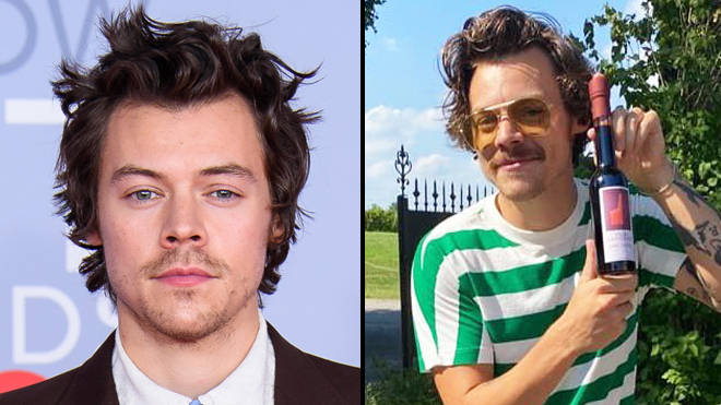 Harry Styles just got a moustache and the entire internet is living for it