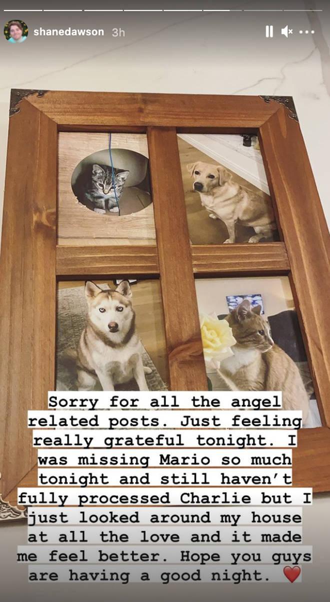 Shane Dawson Instagram Story