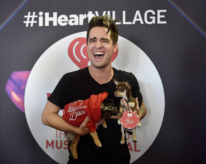 Brendon Urie holding puppies