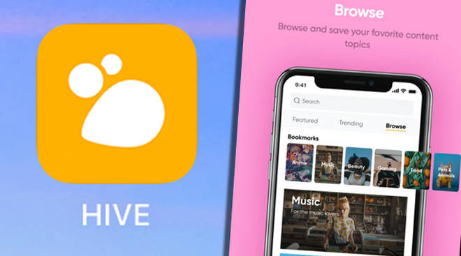 Hive social app: Everything you need to know