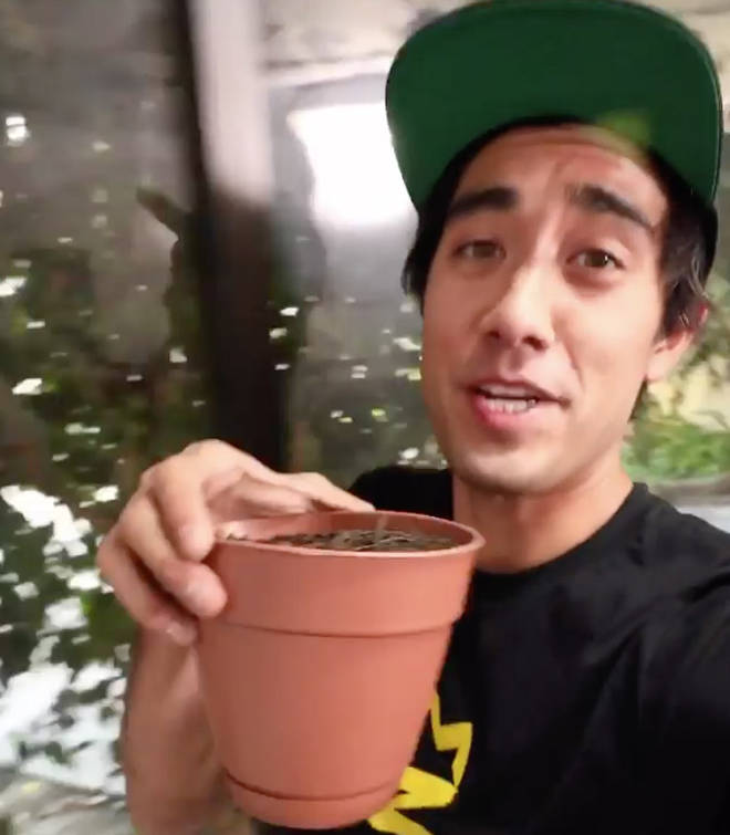 How much money does Zach King make on TikTok?