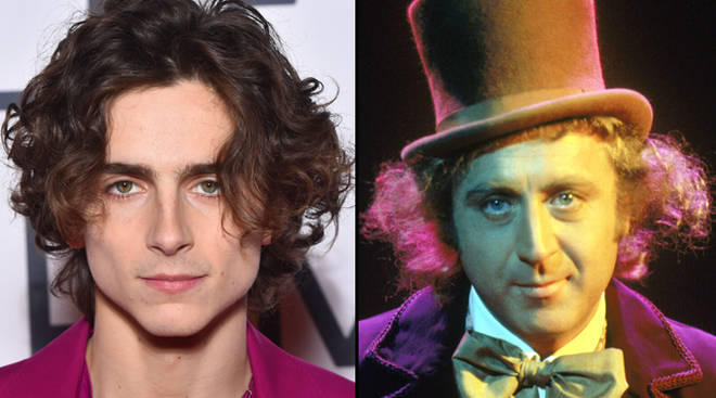 Timothée Chalamet set to play Willy Wonka in prequel movie
