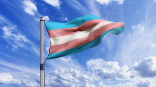 10 ways to be a trans ally in your day to day life