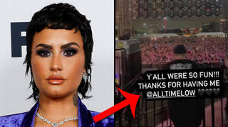 Demi Lovato called out for performing at Sad Summer Fest with All Time Low