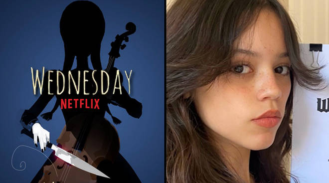 Netflix's Wednesday: When will it be released?