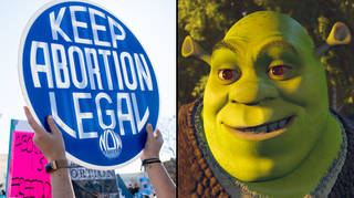 Texas anti-abortion tip line flooded with Shrek porn and memes