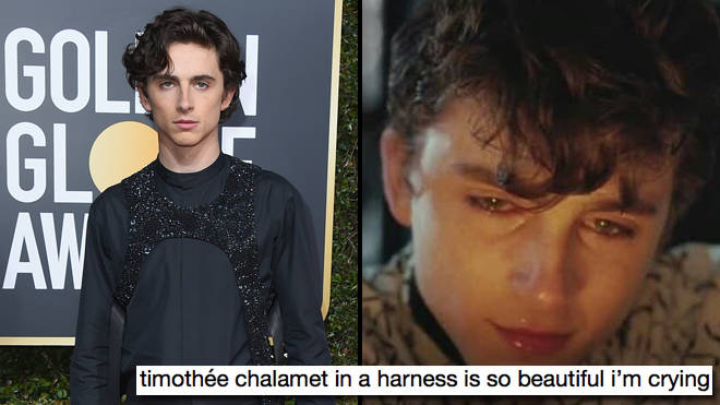 Timothée Chalamet Golden Globes red carpet harness memes