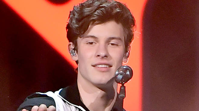 Shawn Mendes accidentally liked a transphobic tweet on Twitter
