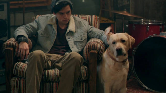 Vegas the dog, Riverdale, Best Character, Ranked