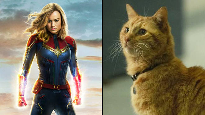 Captain Marvel Cut One Cat Scene