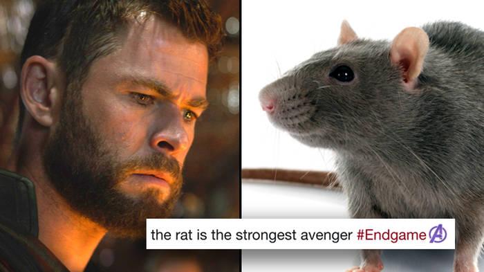 31 'Avengers 4' trailer memes that will ruin you - PopBuzz