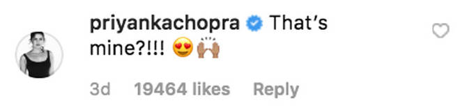 Priyanka Chopra's comment on Nick Jonas' Instagram photo.