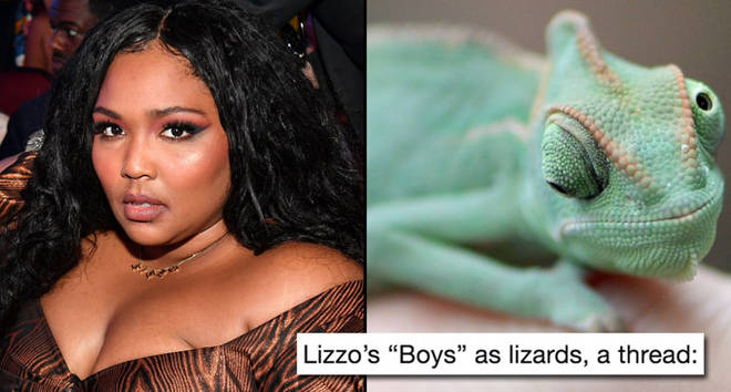 Lizzo at the BET Awards/A veiled chameleon, also known as Yemen chameleon.