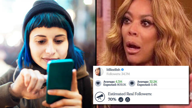 Find out how many fake followers you have on Instagram with IG Audit