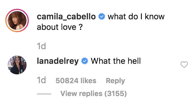 Lana Del Rey's comment on Camila Cabello's new era visuals has confused fans