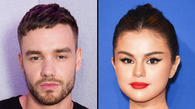 "Selena Gomez fans accuse Liam Payne of ""ripping off"" Same Old Love with Stack It Up"