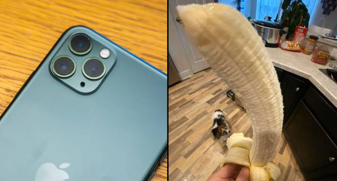 Apple's new iPhone 11 Pro Max, a banana.