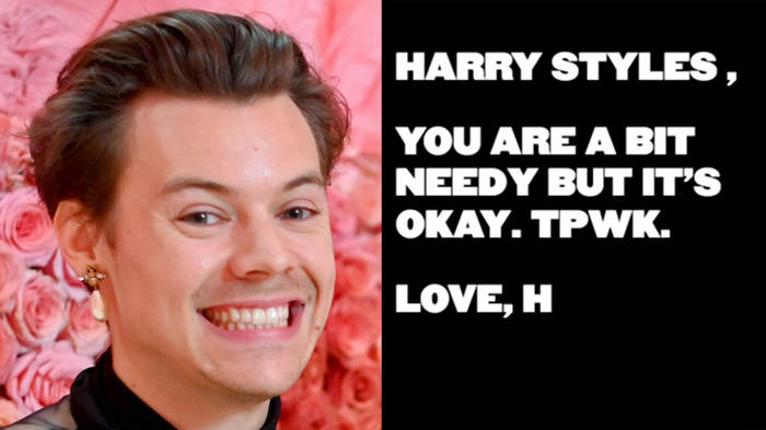 What does TPWK mean? The Harry Styles acronym explained