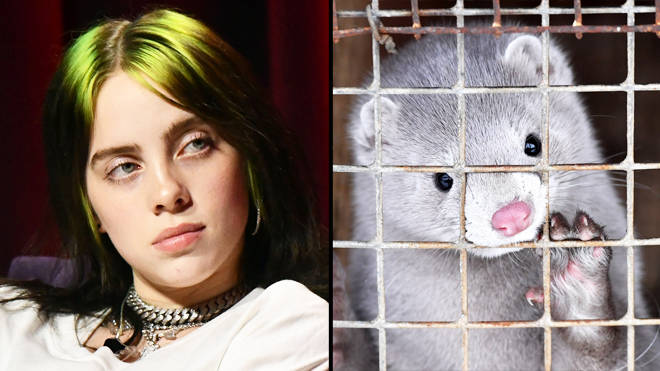 """Billie Eilish says people who wear mink """"disgust"""" her and asks fans to go vegan"""