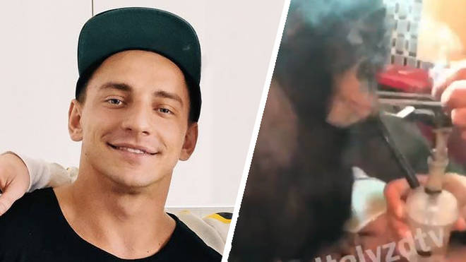 Vitaly Zdorovetskiy makes a chimp smoke from a bong in this shocking new video