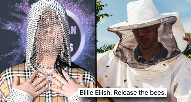 Billie Eilish attends the 2019 American Music Awards, beekeeper.